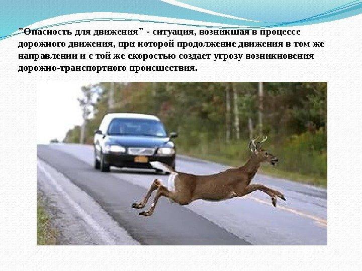 1_obschie_pologheniya_24